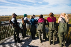 Discussing wetland form and function in the field. Photo: James Marcaccio